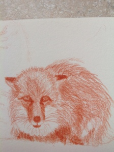 fox portrait image