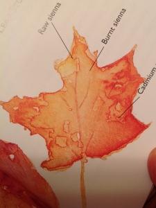 leaf book