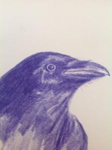 Raven upways 01102015