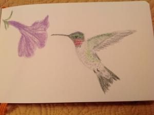 humming and petunia 02062015