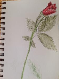 drawing 0527