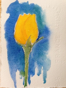 0629 yellow blue
