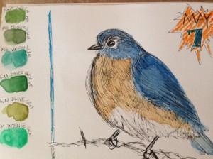 bird June
