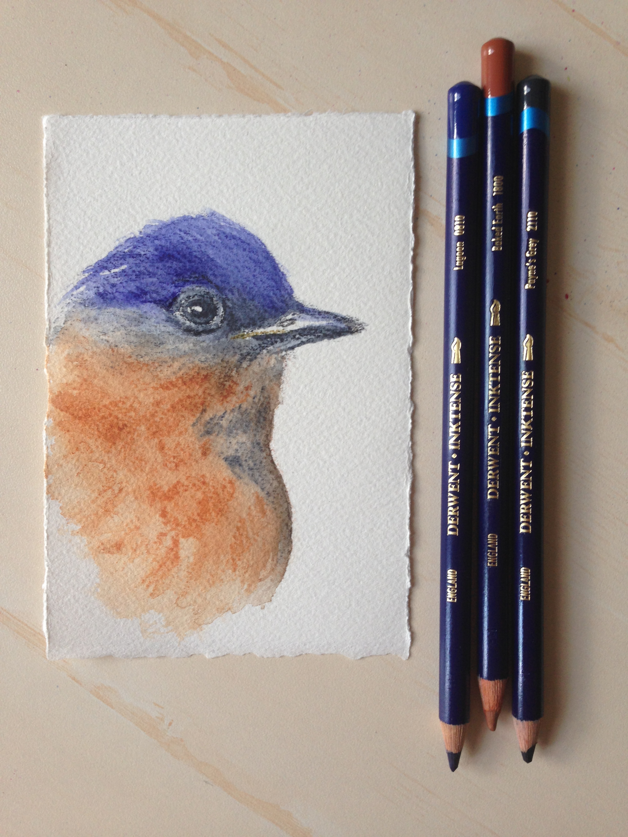 I Find Watercolor Pencils A Quick Fun And Easily Portable Way To Enjoy Art Anywhere Simply Sketch Your Subject As You Would With Pencil Liquefy