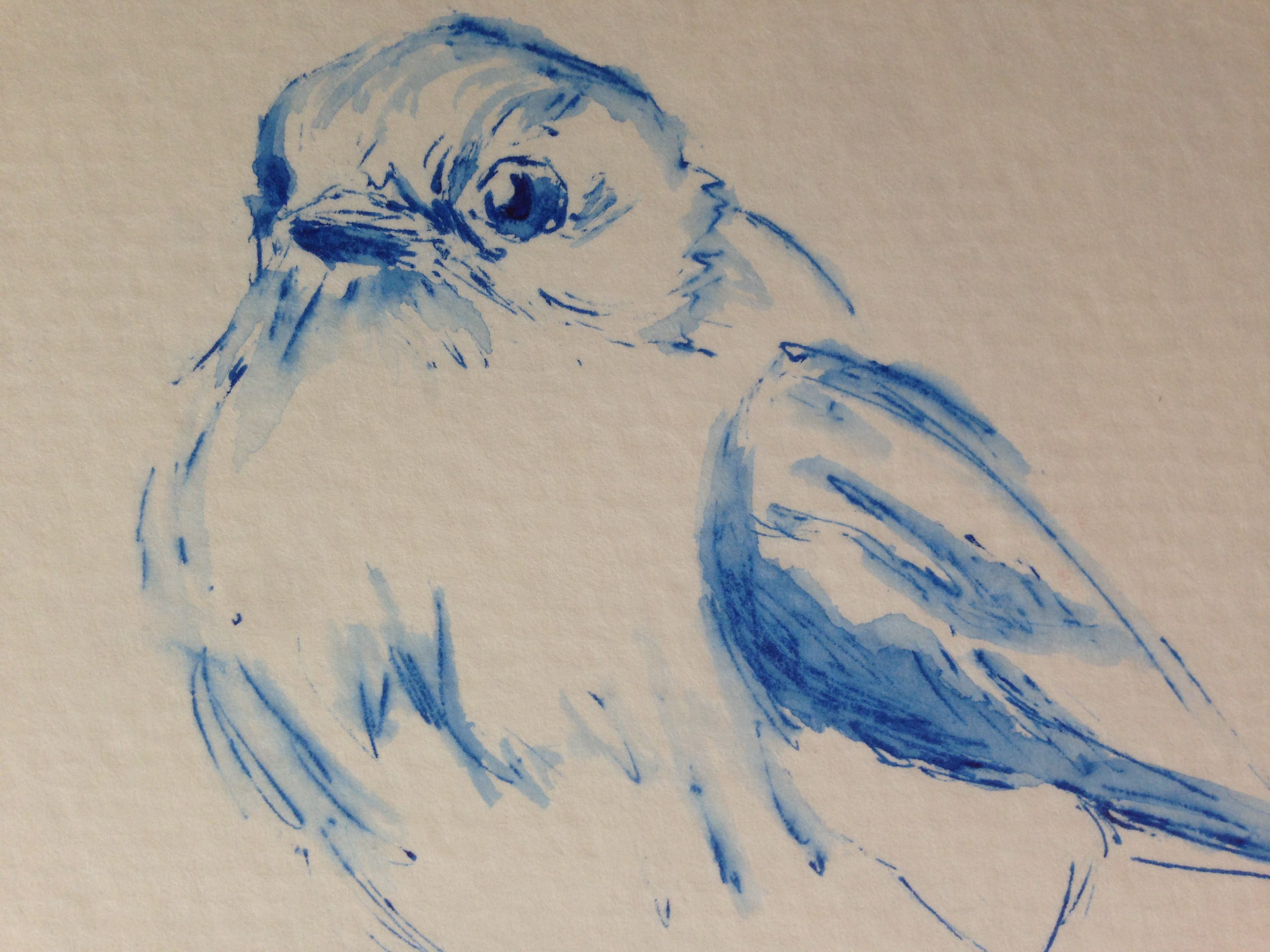 Draw A Bird Day August Issue 100 Face Challenge 71